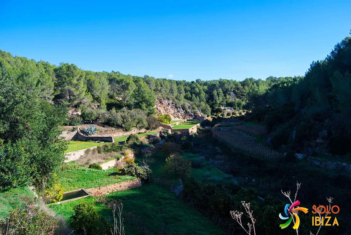 Los 10 mejores lugares para visitar en Ibiza Es Broll de Buscastell